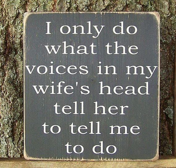 50+ Joke Thread-voices-wife-copy.jpg