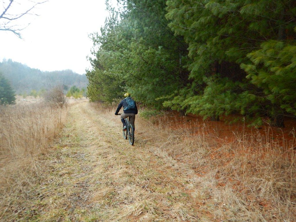 Local Trail Rides-vz3d2c6.jpg