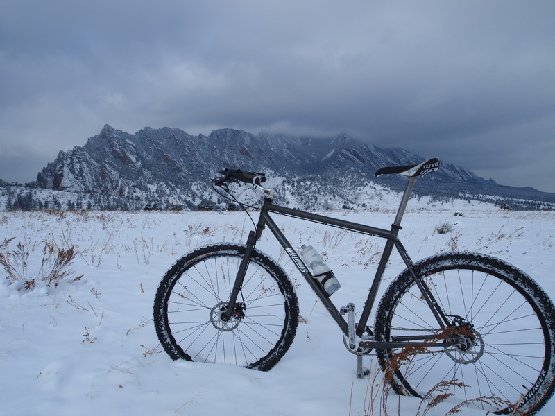 Winter Waltworks 29er Rigid