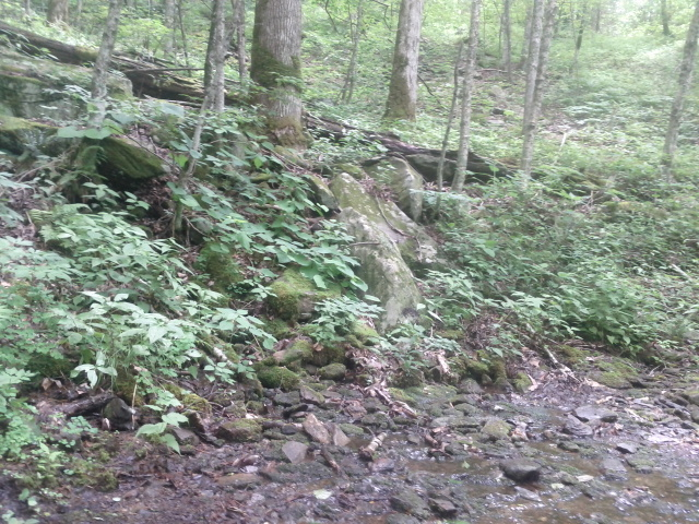 Adventures with the Pisgah Gnome-water-runoff-across-trail.jpg
