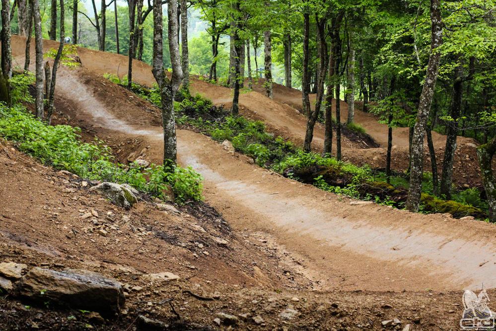 Bikeparks in NC-web-6106.jpg
