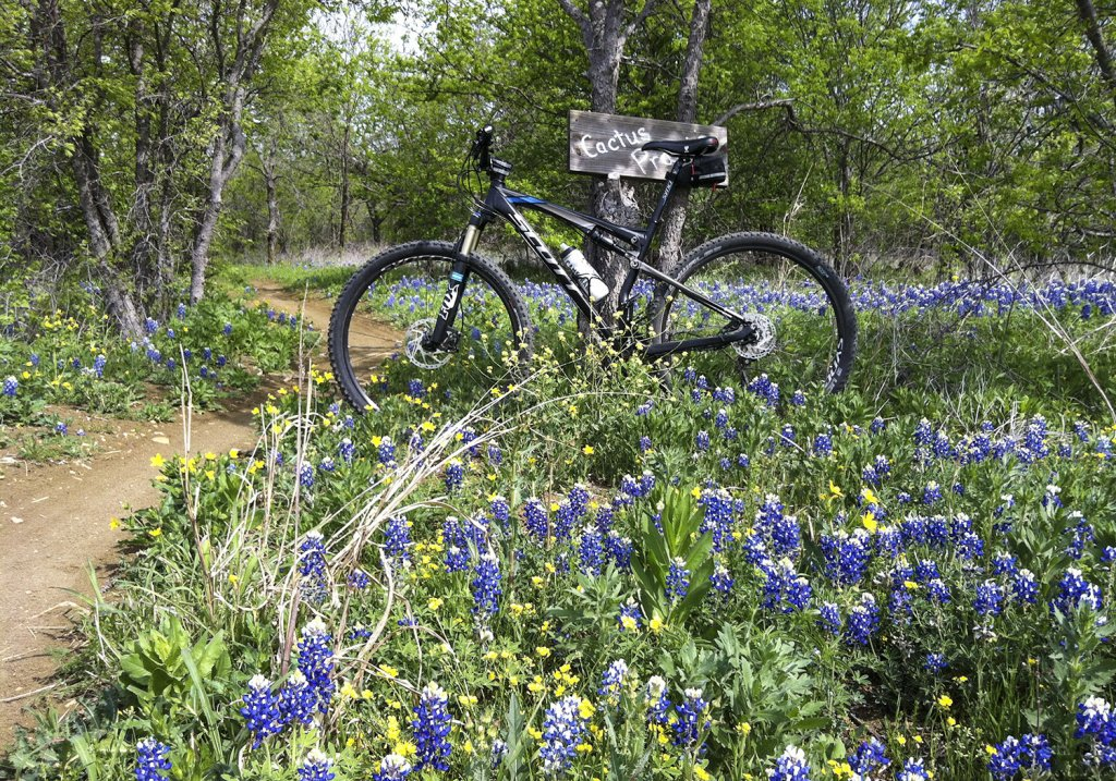 Bluebonnet trails-web-photo.jpg