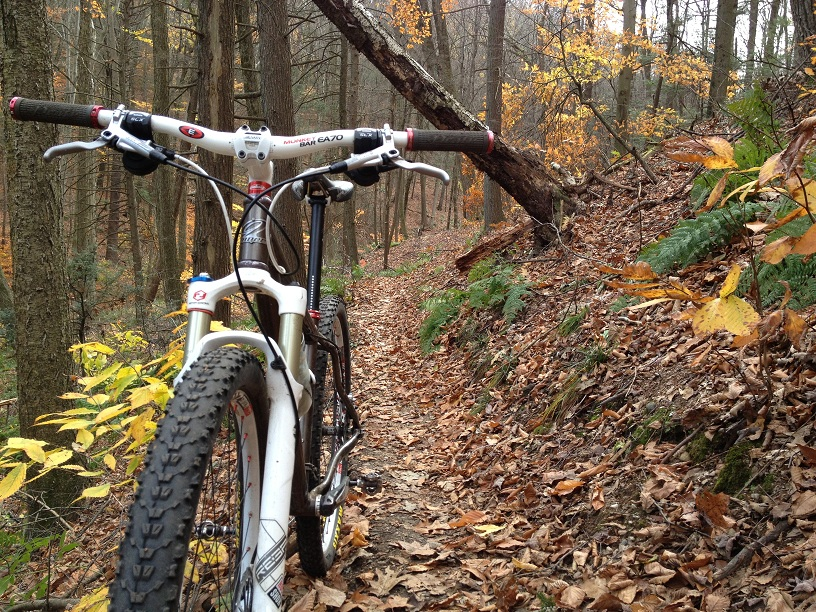 29ers In The Fall-web1.jpg