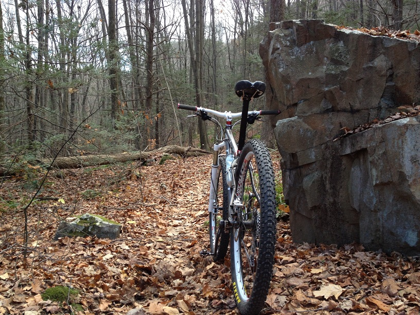 29ers In The Fall-web2.jpg