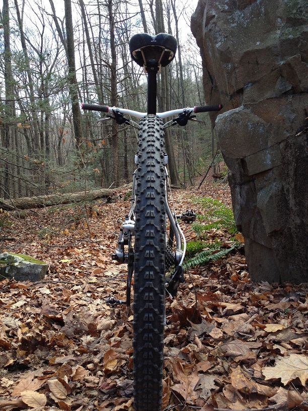 29ers In The Fall-web3.jpg