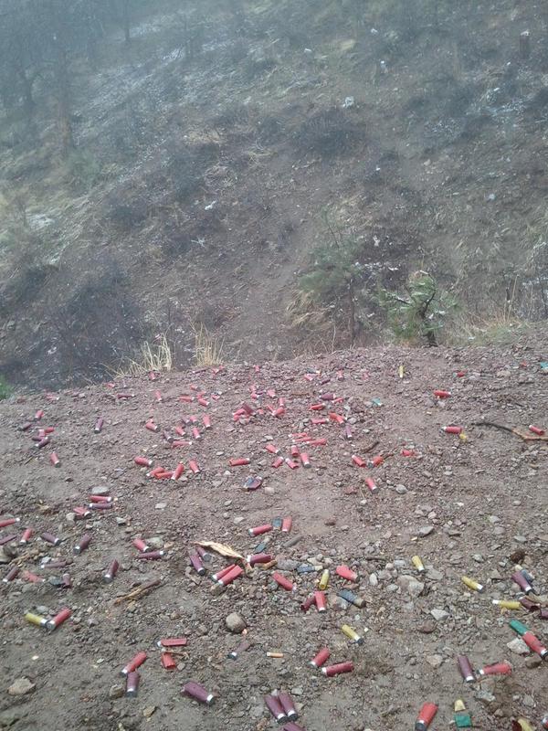 Stray Bullets at Buffalo Creek-web_2011-04-03-17.05.47.jpg