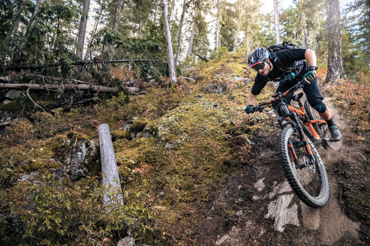 Shift in Perception: An ode to plus bikes