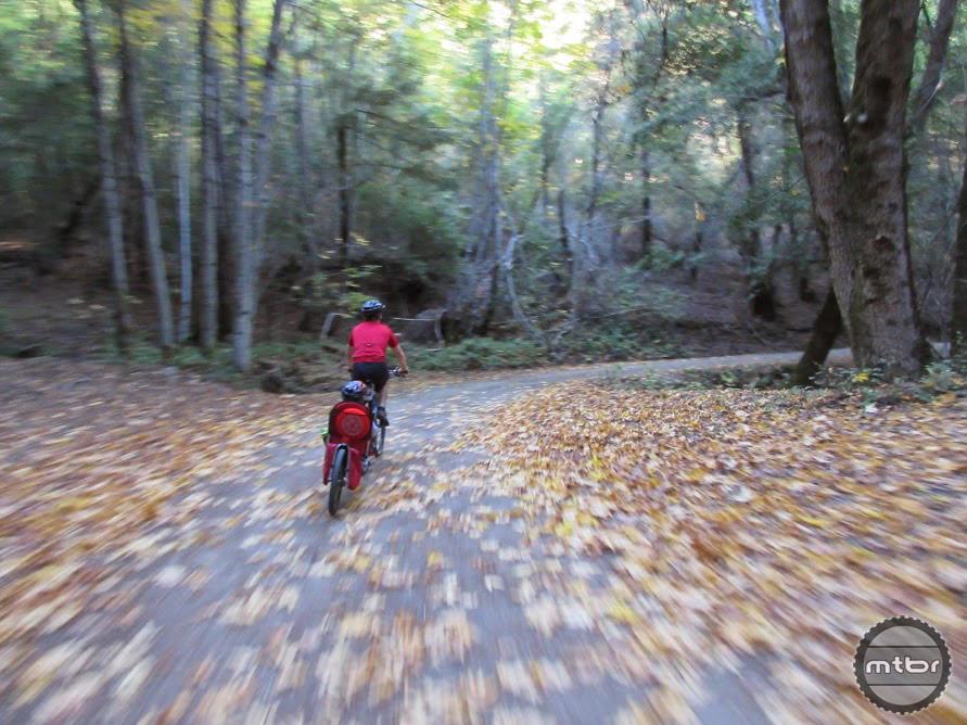 Fun, fall day adventure on the new John Nicholas Trail in Los Gatos.