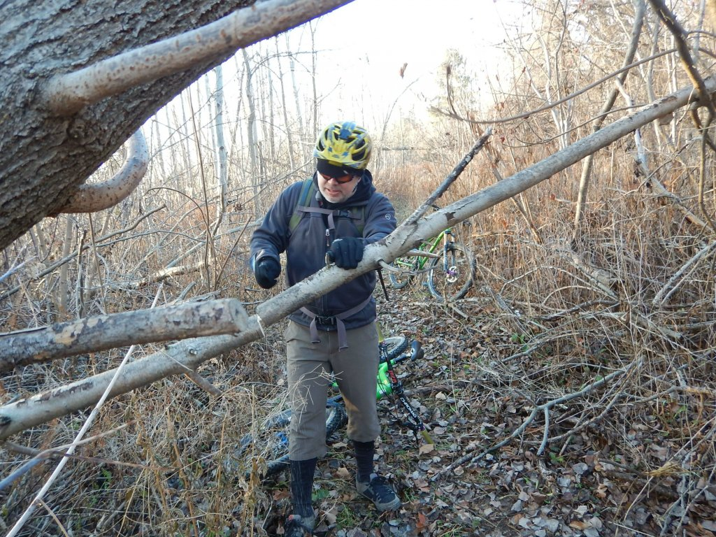 Local Trail Rides-weop0nv.jpg