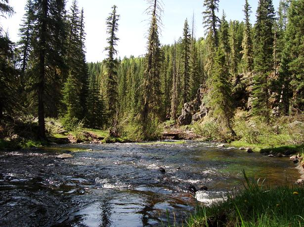 Big Lake, Thompson Trail-west-fork-river-mtbr.jpg