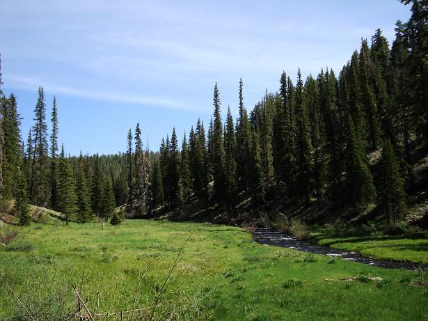 Big Lake, Thompson Trail-west-fork-stream-mtbr.jpg