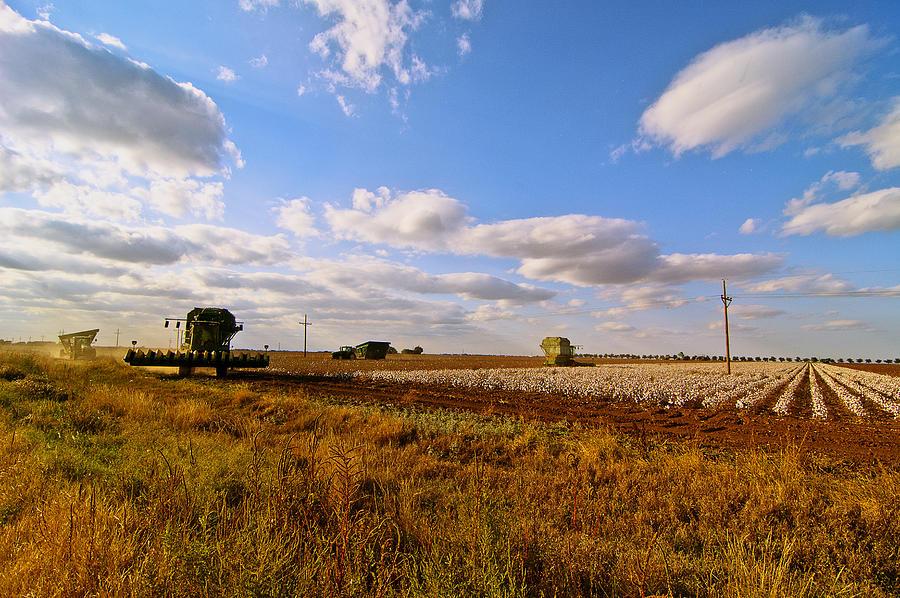 Where to live in Texas?-west-texas-cotton-harvest-robert-hudnall.jpg