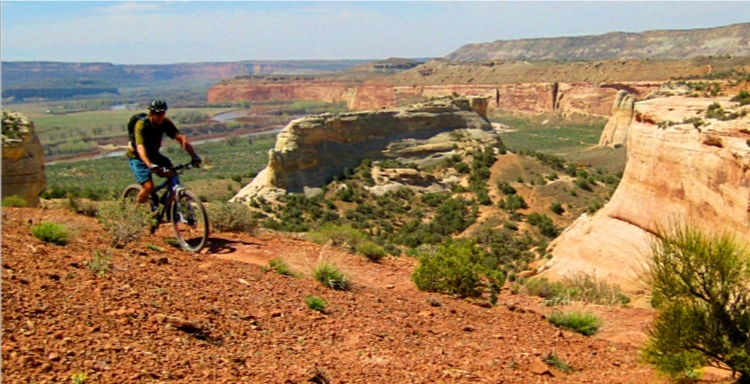 Post a pic of your fave trail ( ever )-western-rim-ride.jpeg