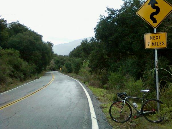 Rain bike or rain diversions?-wet_tarmac.jpg