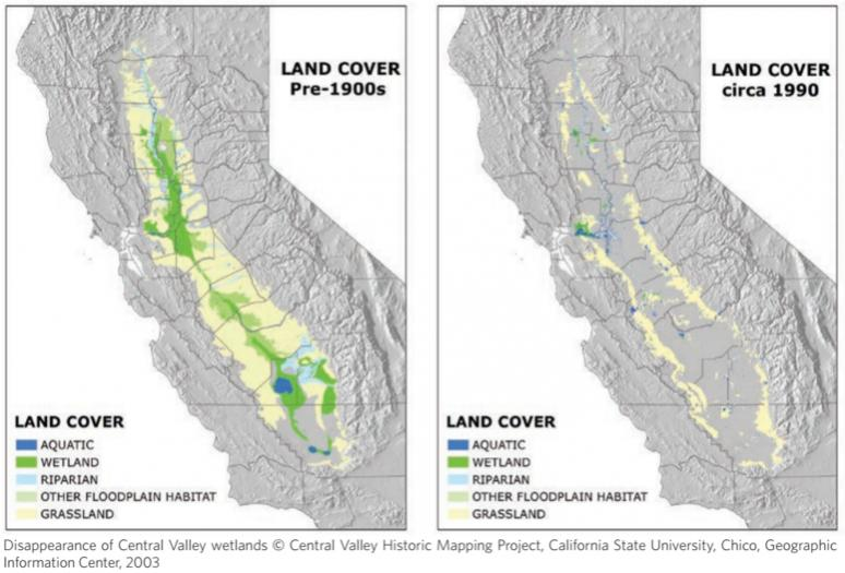 OT: The Oroville Reservoir situation-wetland-loss.jpg