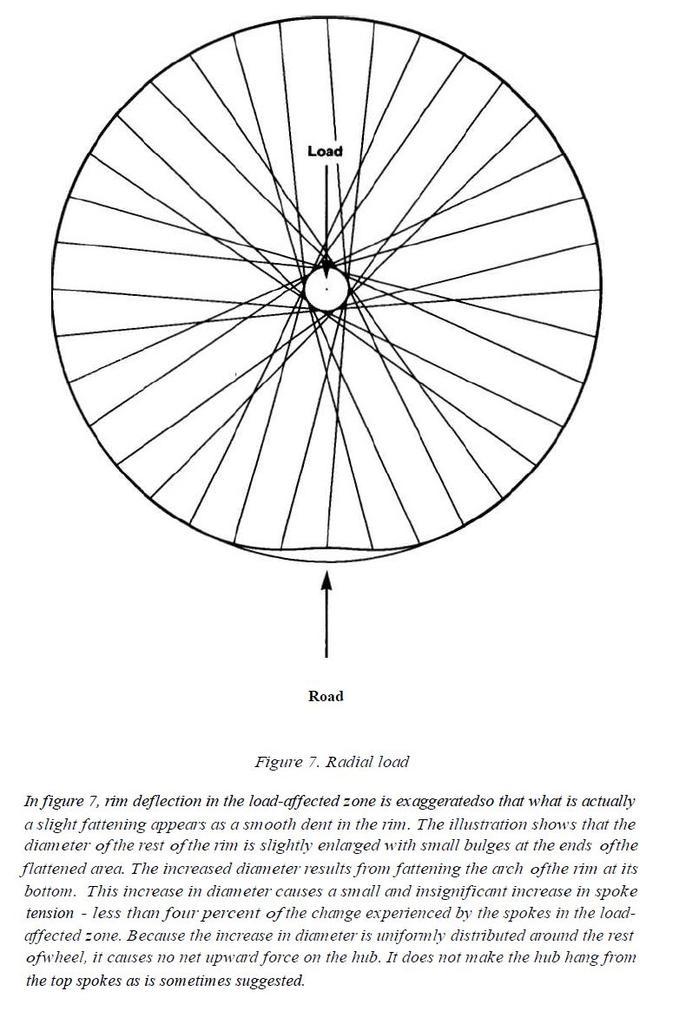 Berd spokes.-wheel-load-mechanism.jpg