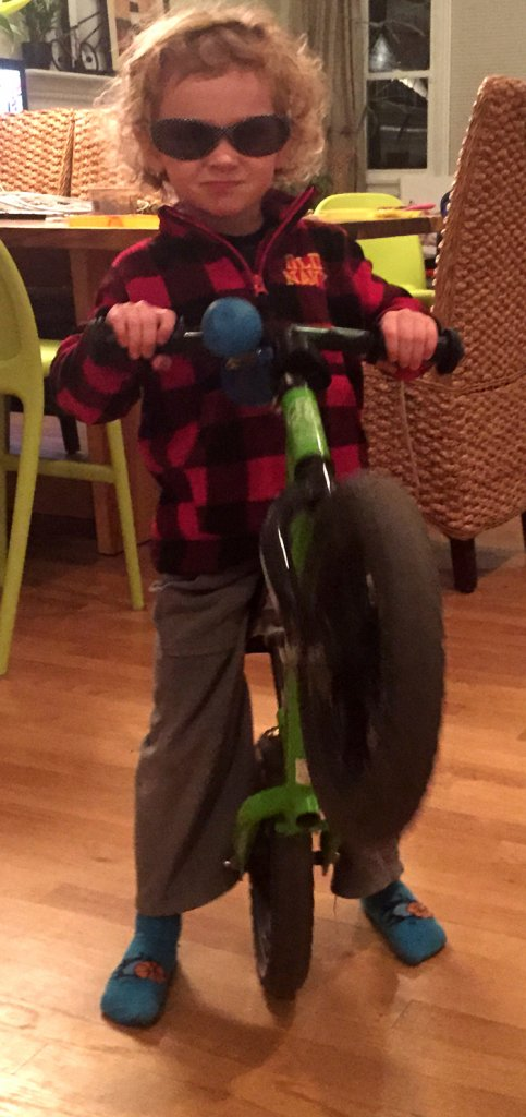Parents - Roll call here.-wheelie-dude.jpg