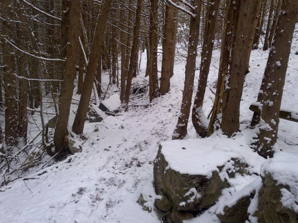 what is your riding plan for winter. any plan!-whitby-20130126-00017.jpg