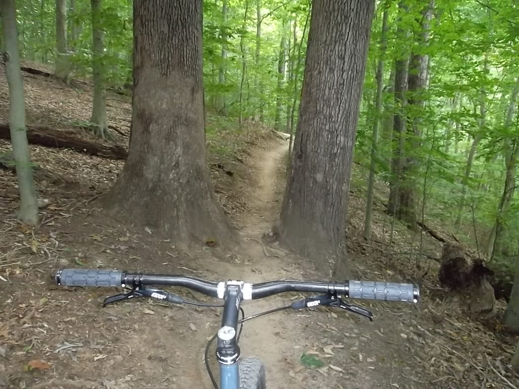 Share your LATEST SS ride...Pics and words-white-clay-006.jpg