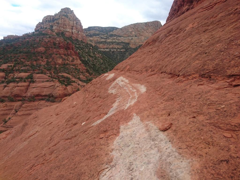 "Arizona ""Must Ride"" Trails-white-line-4.jpg"