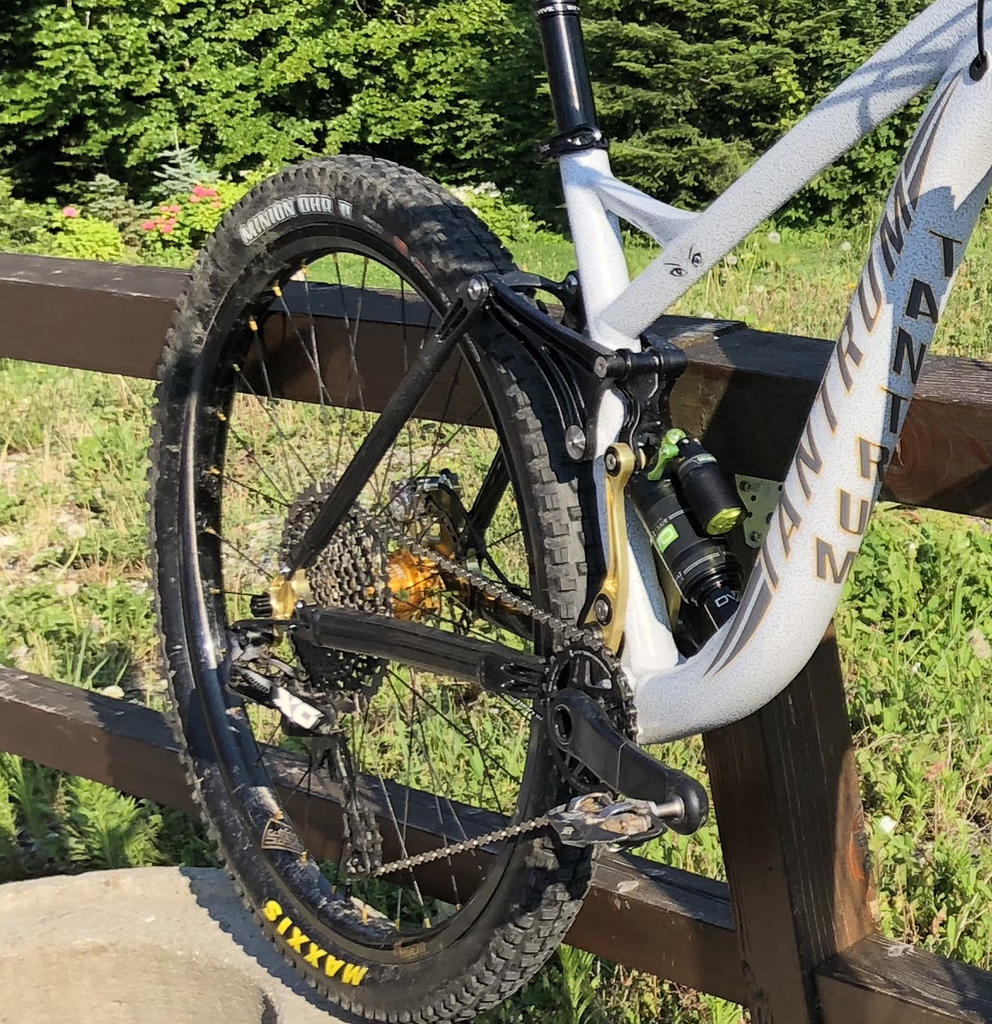 New innovative suspension from Tantrum Cycles. Any thoughts...-white-lizard-1.jpg