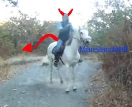 Name:  whitehorse.jpg Views: 906 Size:  20.9 KB