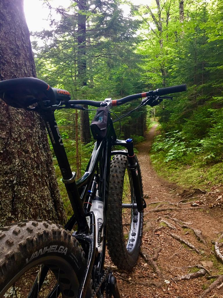 Daily fatbike pic thread-whitetail-july17.jpg