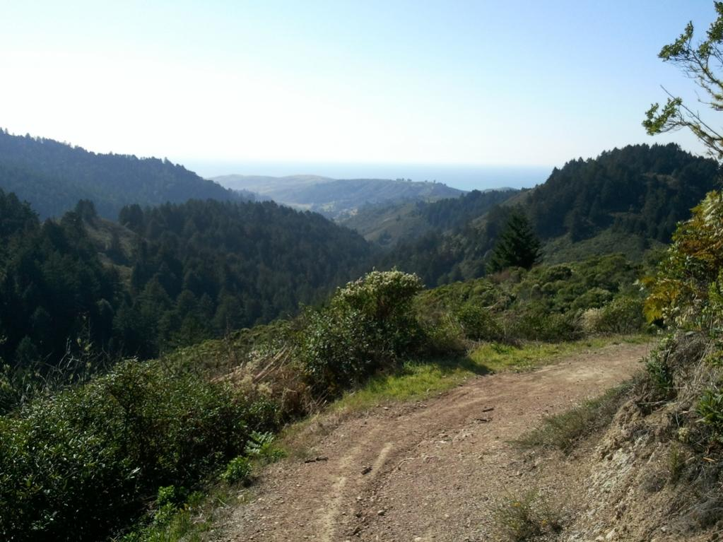 List your favorite trail in Nor Cal-whittemoregulch.jpg