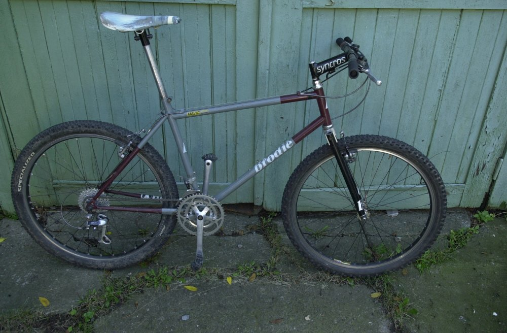 Canadian Steel! (let's see yours)-whole-bike.jpg