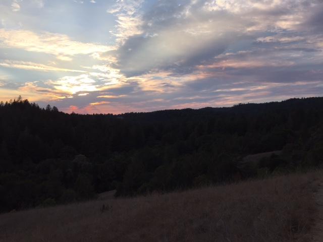 Sunrise or sunset gallery-wilder.jpg