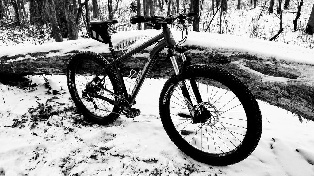 Deciding on a New Fat Bike - Looking for input (snow flotation/year rounder)-winter-mtb-black-white.jpg