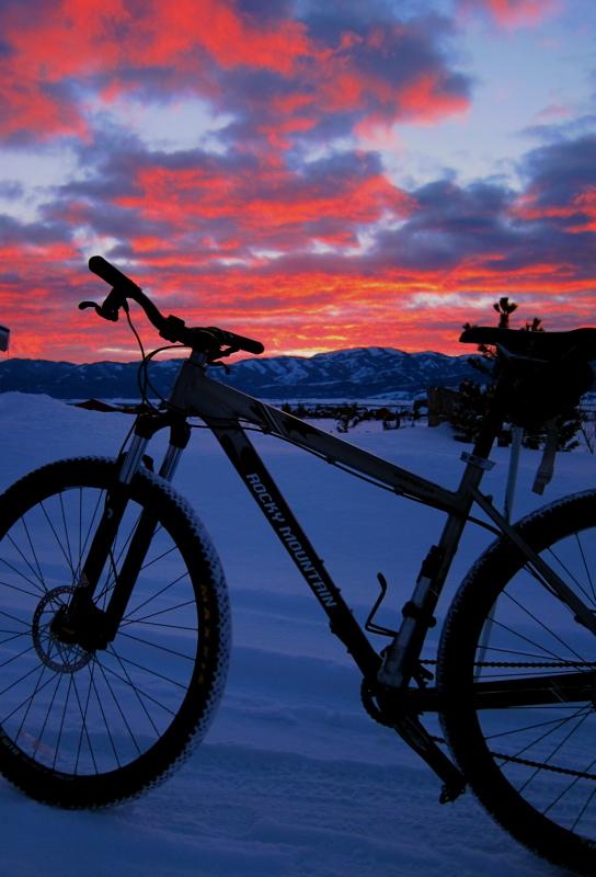29er Studded Tires-winterbike.jpg