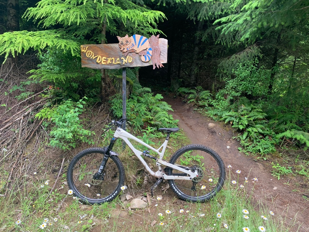 did you ride today?-wonderland-sign.jpg