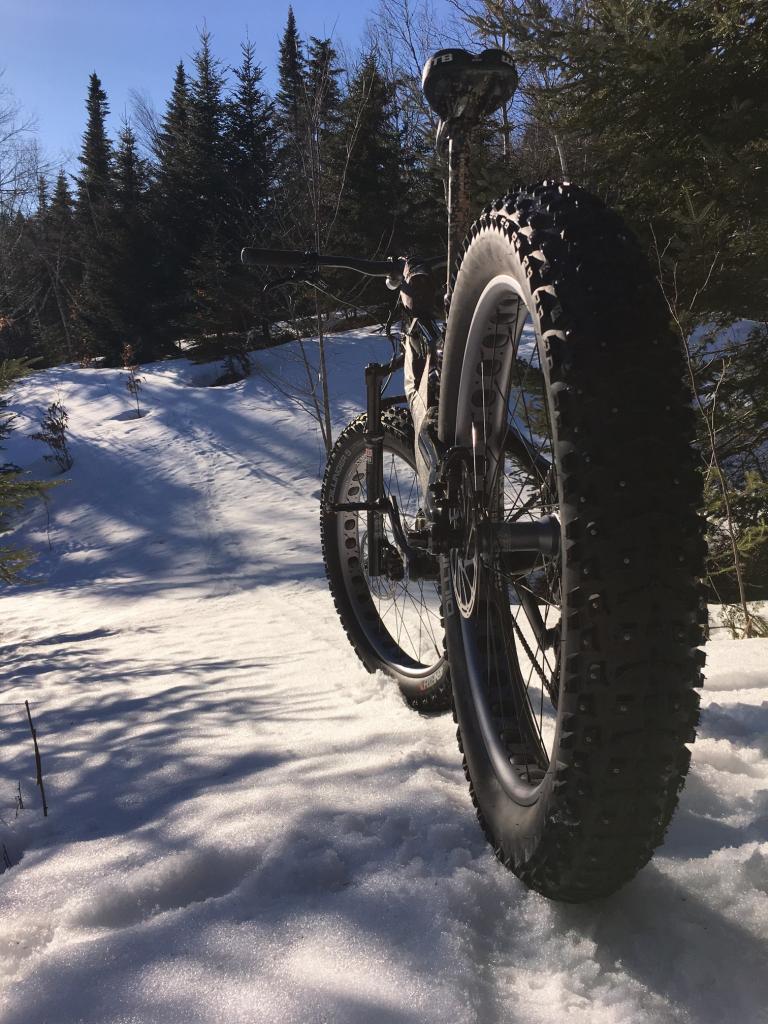 Fat Bike Questions-woodlot3.jpg