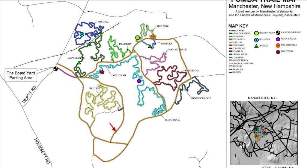 FOMBA woodpecker trail-woodpecker.jpg