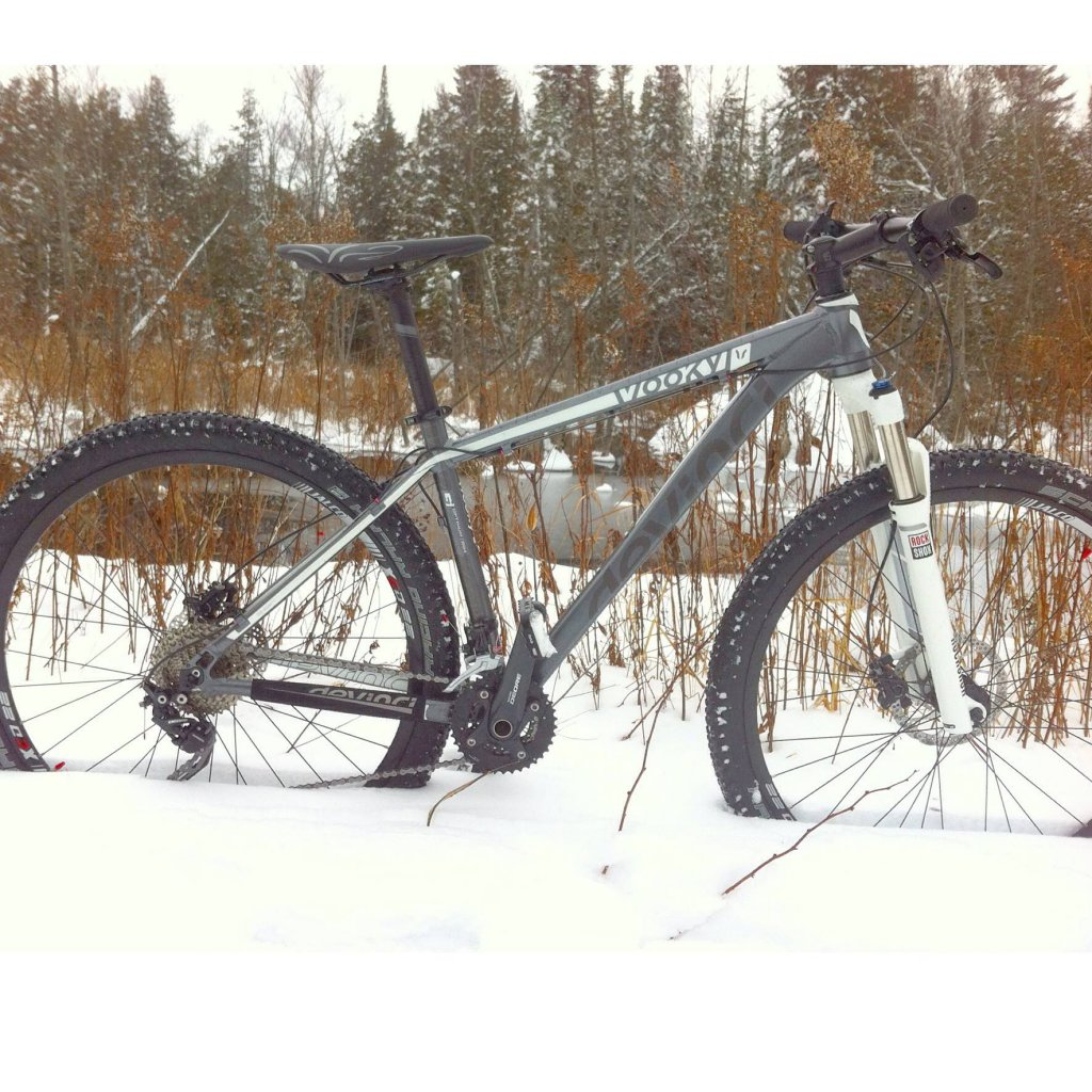 Show off your Devinci's!-wooky.jpg