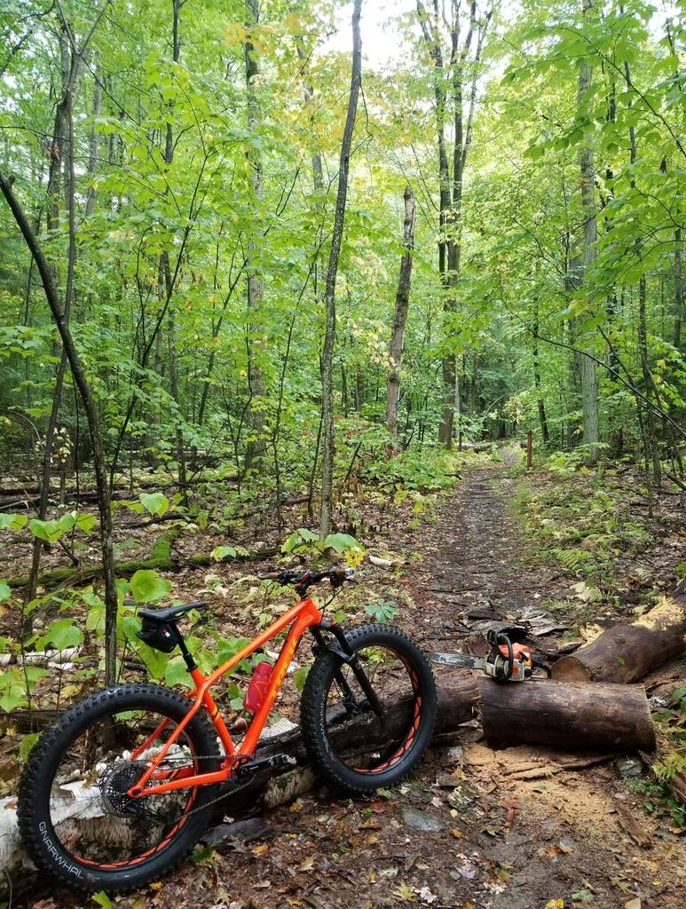 New Bike Day! 2020 Trek Farely 7-work-pig.jpg
