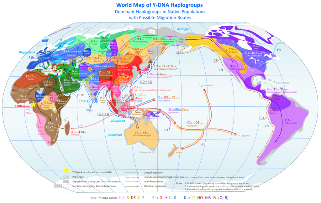 off road leaning cargo trike-world_map_of_y-dna_haplogroups.jpg