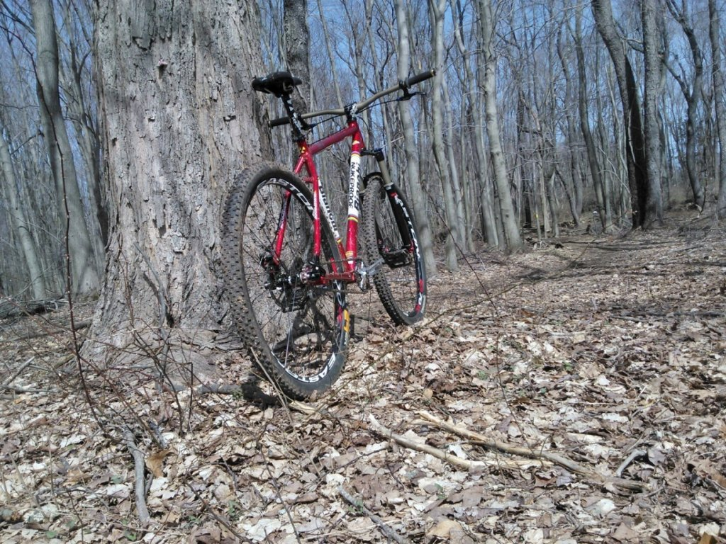 "The ""New"" Post Your Singlespeed!-wp_000194.jpg"