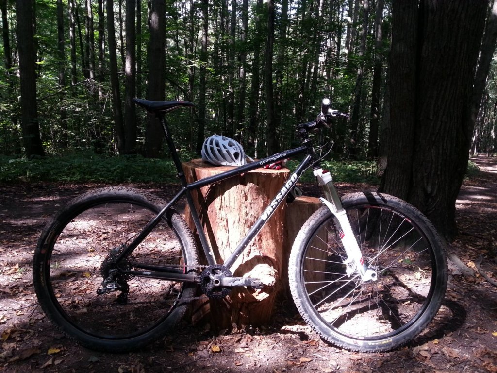 Post Pictures of your 29er-wp_20130817_001.jpg