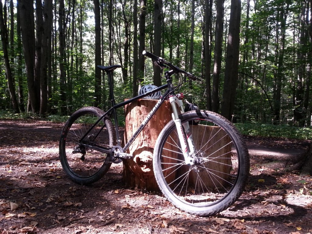 Post Pictures of your 29er-wp_20130817_003.jpg