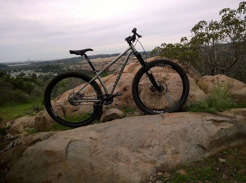 whats your steel 29er set up!-wp_20150128_004.jpg