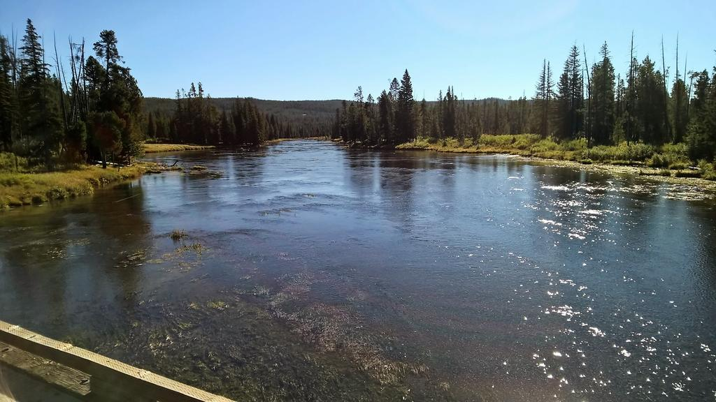 West Yellowstone Sept 30th-Oct 3rd...-wp_20160910_10_19_40_pro.jpg