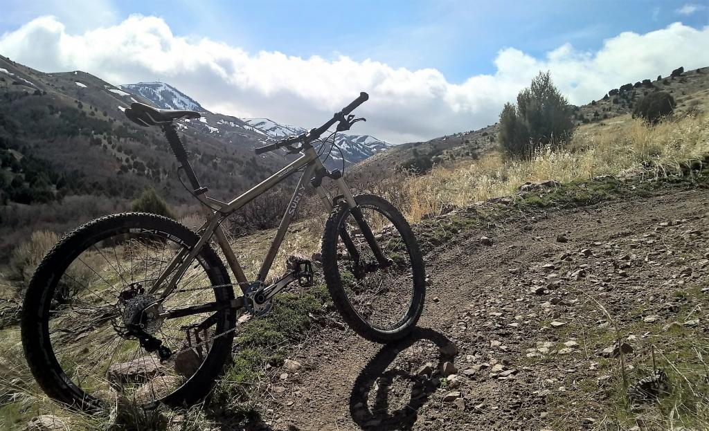 Post Pictures of your 27.5/ 650B Bike-wp_20170323_14_27_11_pro_eagle.jpg