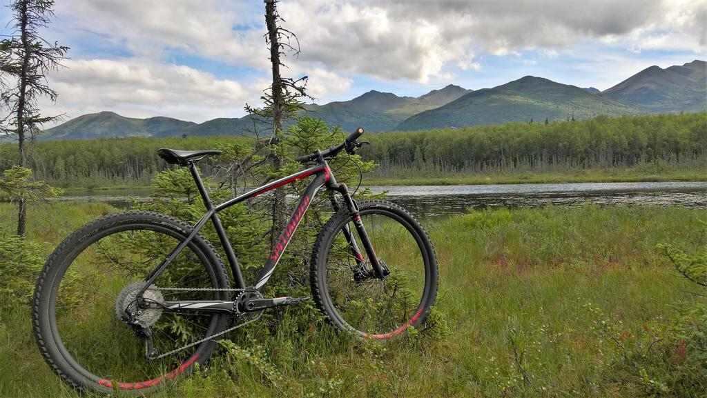 A dedicated thread to show off your Specialized bike-wp_20170808_12_20_25_rich.jpg