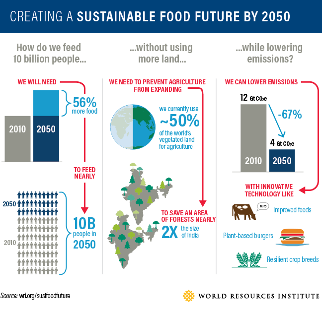 2026-wrr-food-graphic-01.png