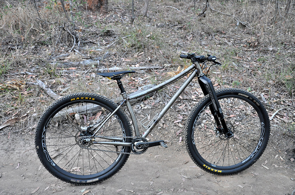 Lets see some steel 29ers!-ww-no2-2.jpg