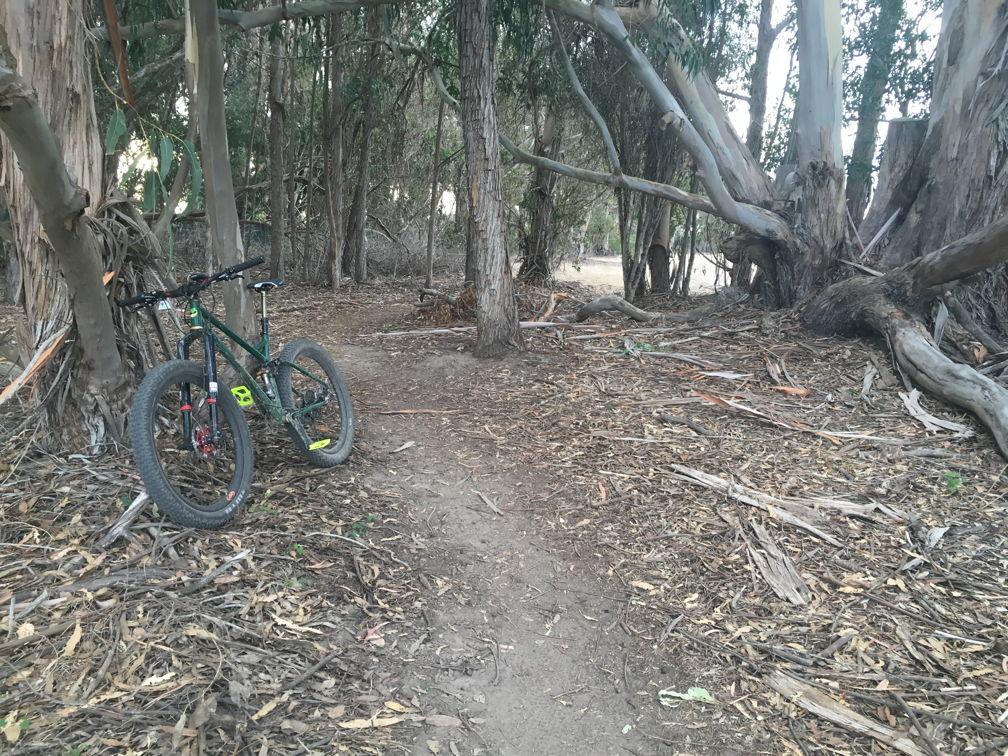 Cross Bikes on Singletrack - Post Your Photos-wwmoramesa0.jpg