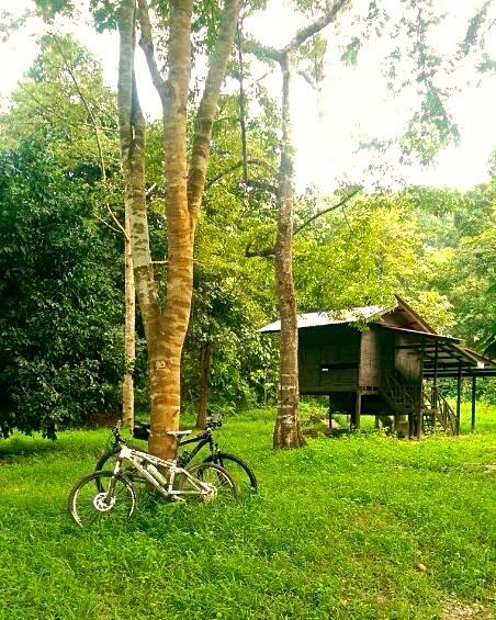 Brunei-xc-wasai-bedanu.jpg