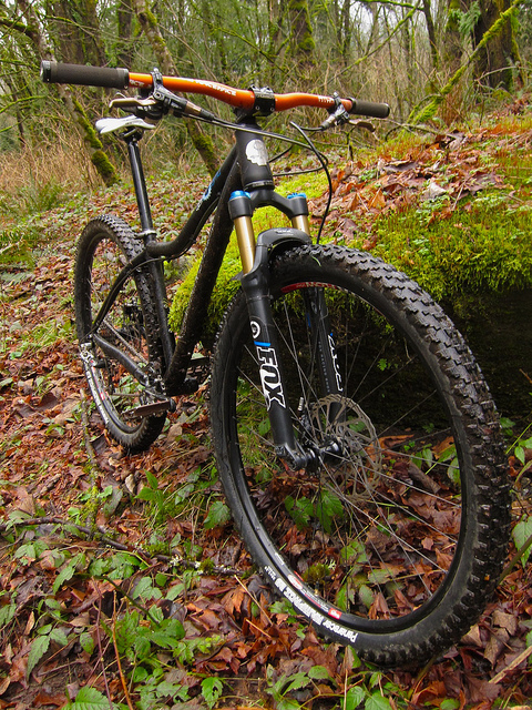 Canfield Yelli Screamy 29er